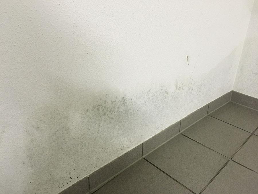 Fußbodenbelag Keller ~ Was mache ich bei feuchtigkeit im keller floorwork eu